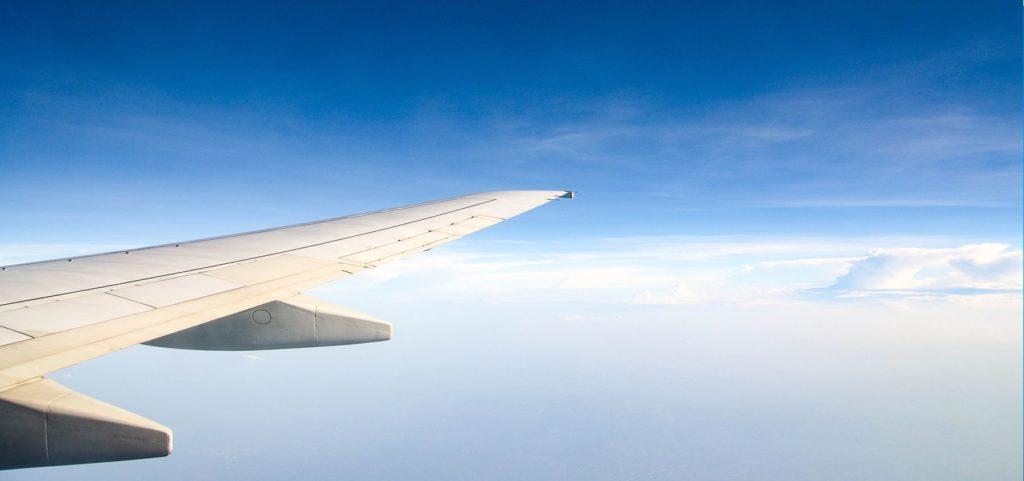 Wing in Flight